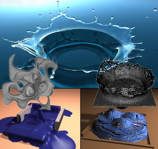 Liquid Simulation with mesh-based Surface Tracking